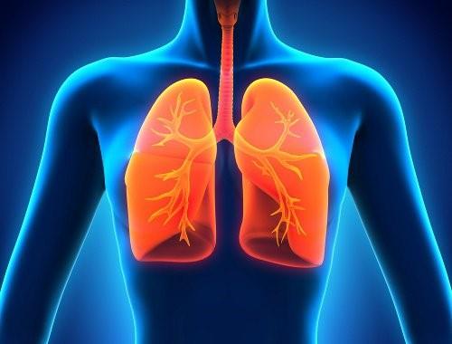 pulmones y EPOC