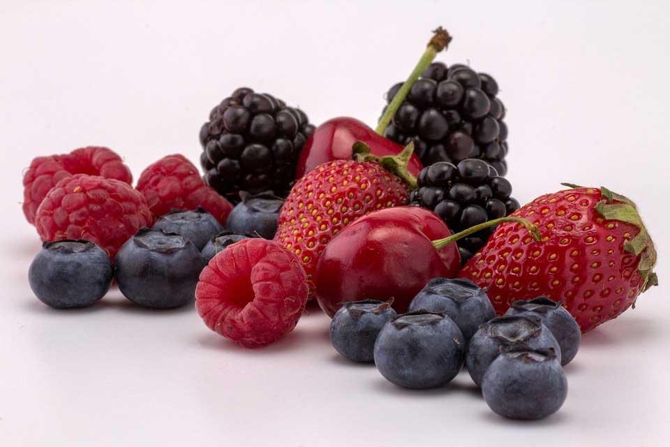 variedad de frutos del bosque