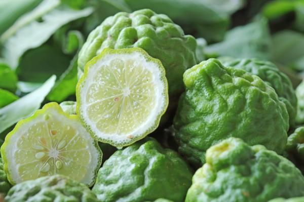 9 usos del aceite esencial de bergamota