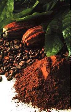 Falsos mitos sobre el chocolate, el cacao y la salud