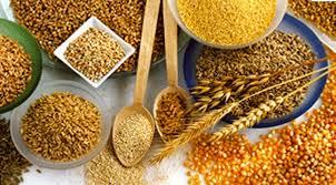 Cereales de grano entero, una fuente de proteína, minerales y vitaminas