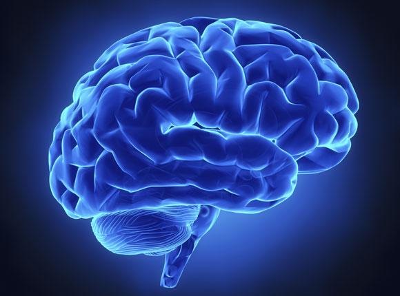 7 pasos para entrenar el cerebro
