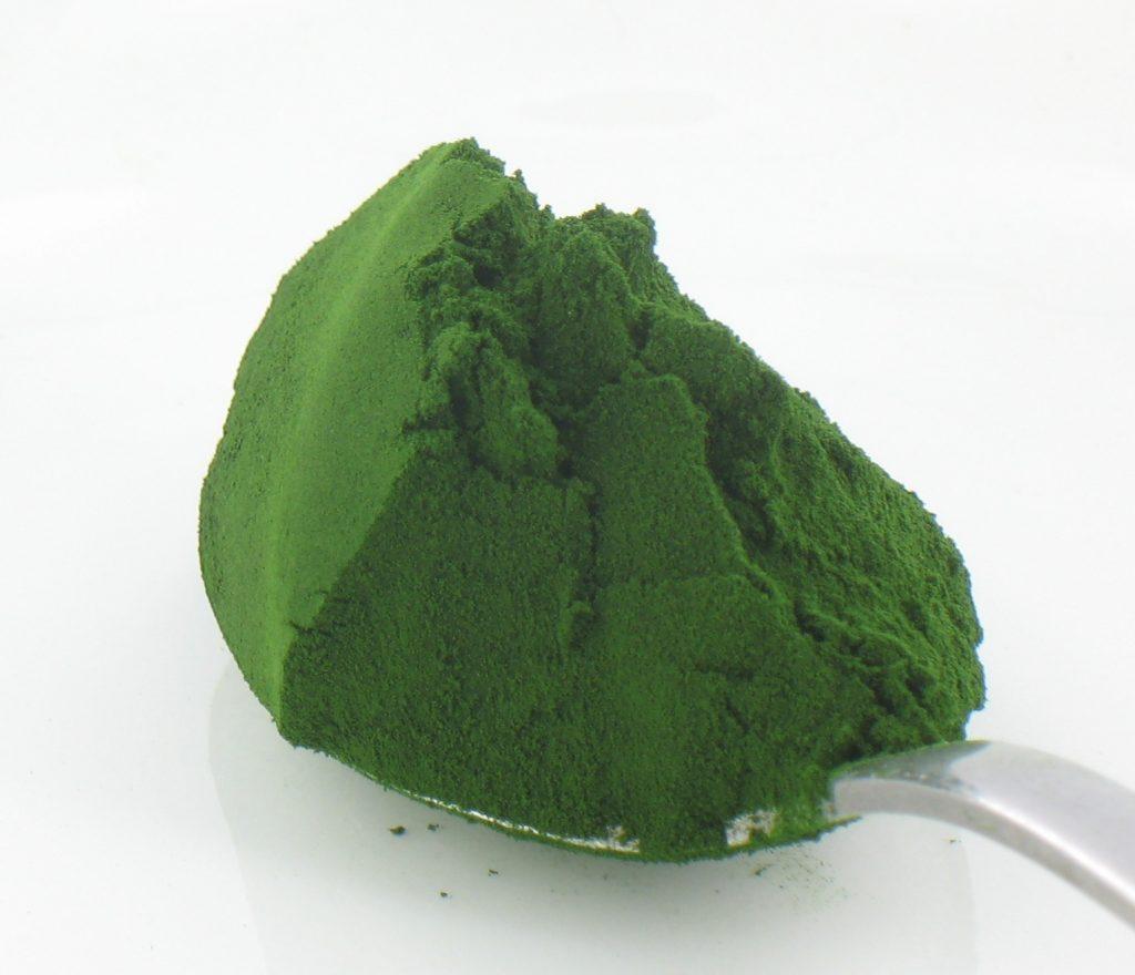 La Sporopolleina de la Chlorella, más que antioxidante