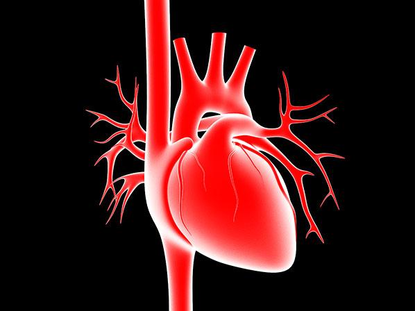 Alimentos a evitar para mantener un corazón sano
