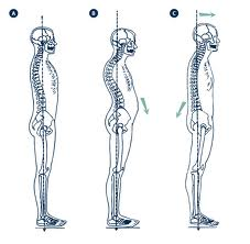 espalda recta