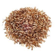 Espelta, un cereal rico en minerales y aminoácidos y de alta digestibilidad
