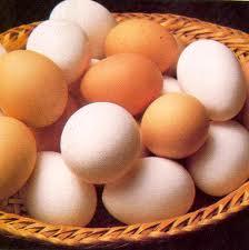 El huevo una fuente de nutrientes que no engordan