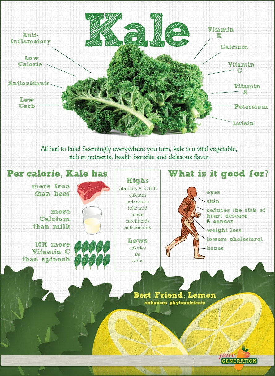 KALE, la nutritiva verdura que está de moda