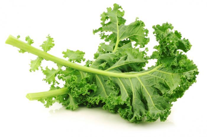 Kale, un súper food o alimento para todos