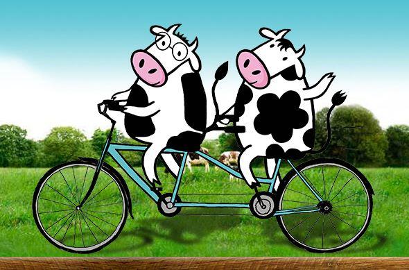 Lo ecológico está de moda. Las 2 vacas