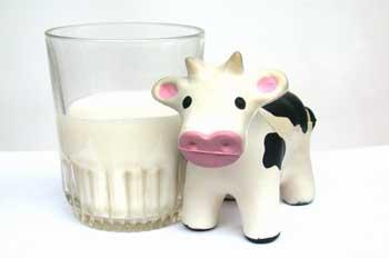 Diferencias entre la intolerancia y la alergia a la lactosa de la leche
