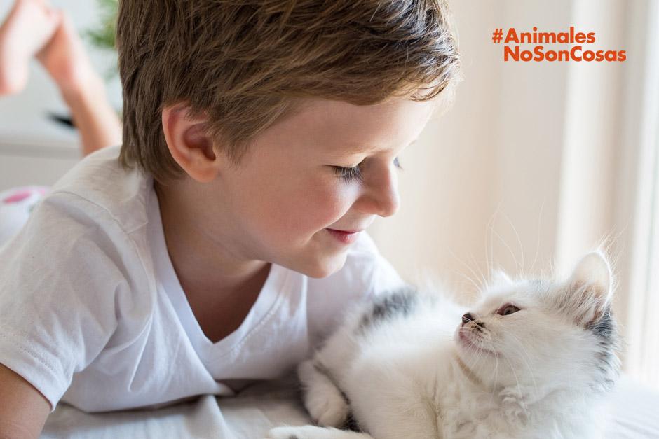 Día Mundial de los animales: #AnimalesNoSonCosas