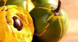Lúcuma, una fruta rica en hierro, fibra y antioxidantes