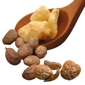 Shea butter o manteca de Karité, nutrición y belleza para la piel en invierno