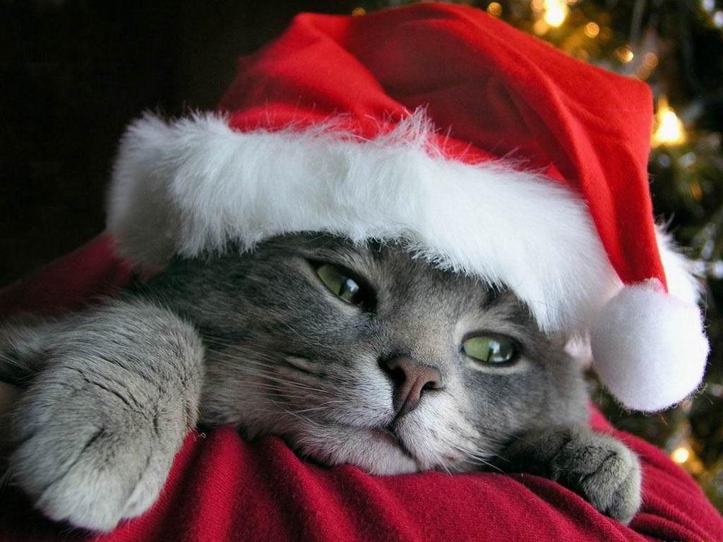 ¿Es imprescindible ser feliz en Navidad?
