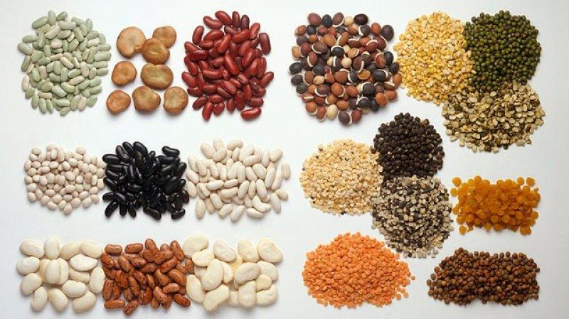 Efectos negativos por una carencia de proteínas vegetales