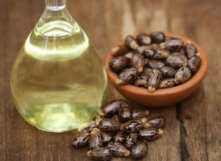 aceite de ricino y semillas
