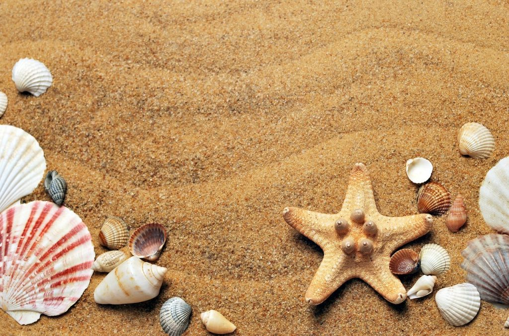 5 Cosas imprescindibles para llevarte a la playa este verano